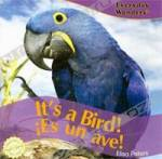 It?s a Bird! / iEs un ave! (Everyday Wonders / Maravillas De Todos Los Dfas)